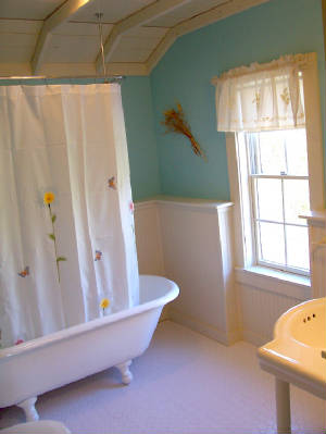 Bath in the Farm House Cottage in Arcadia, MI